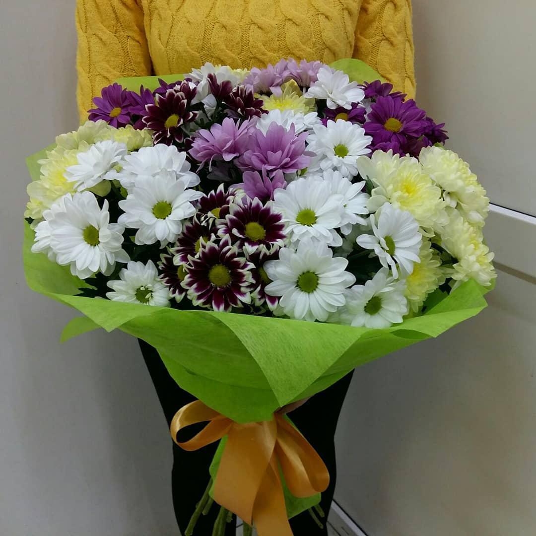 Хризантемы в подарок фото